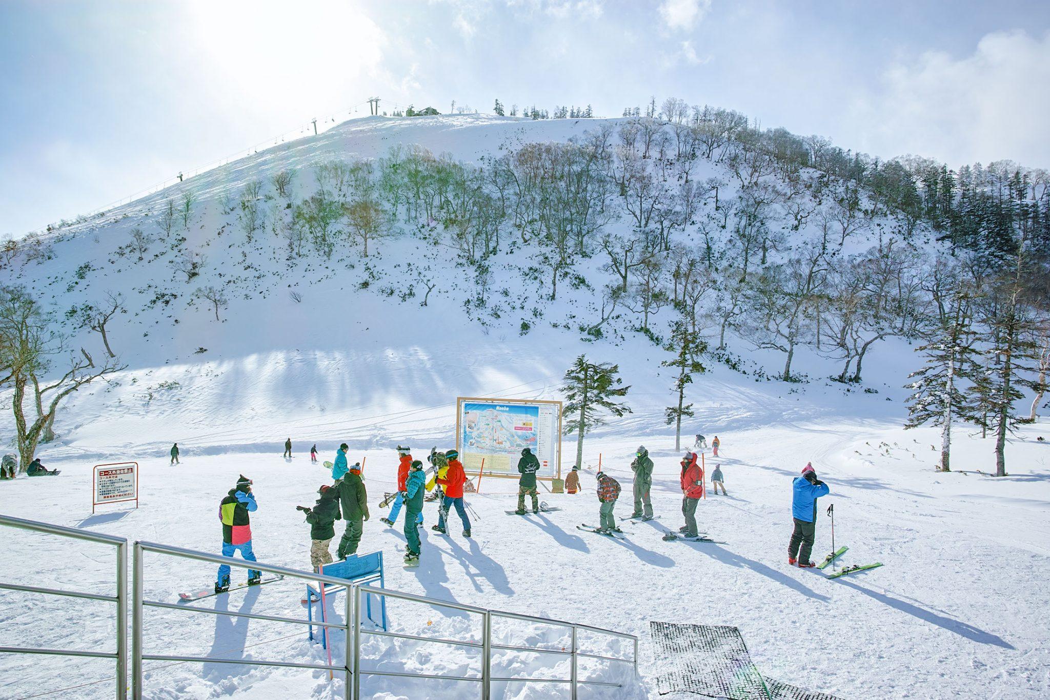 スノーボーダーたち、スキーヤーたち