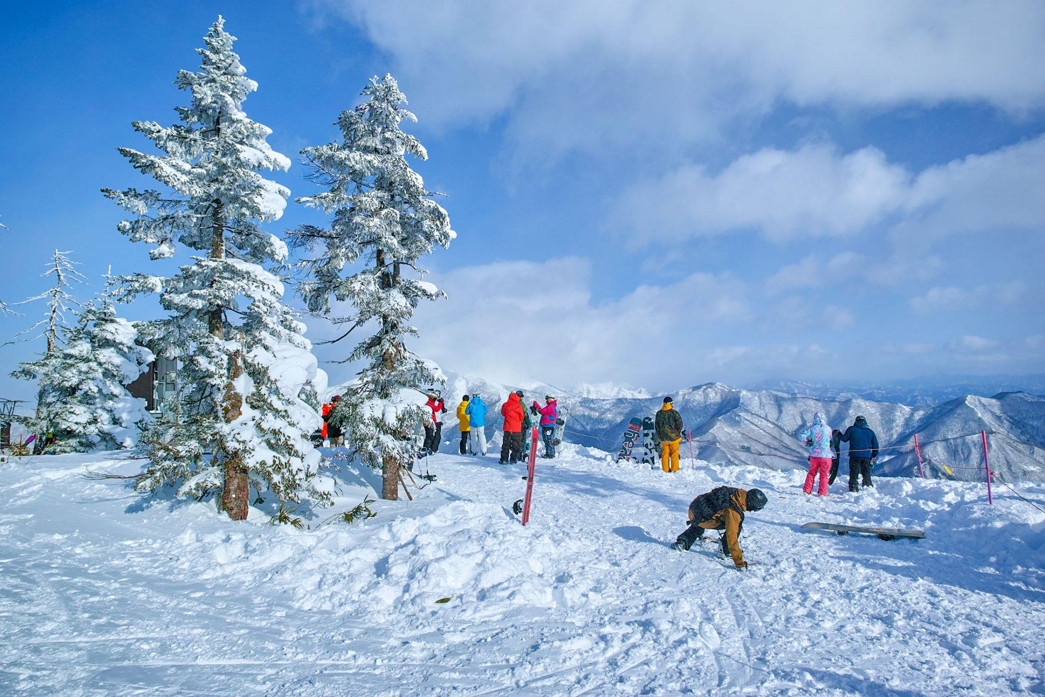 山頂リフトを下りて、更に歩いて上った最頂上地点。