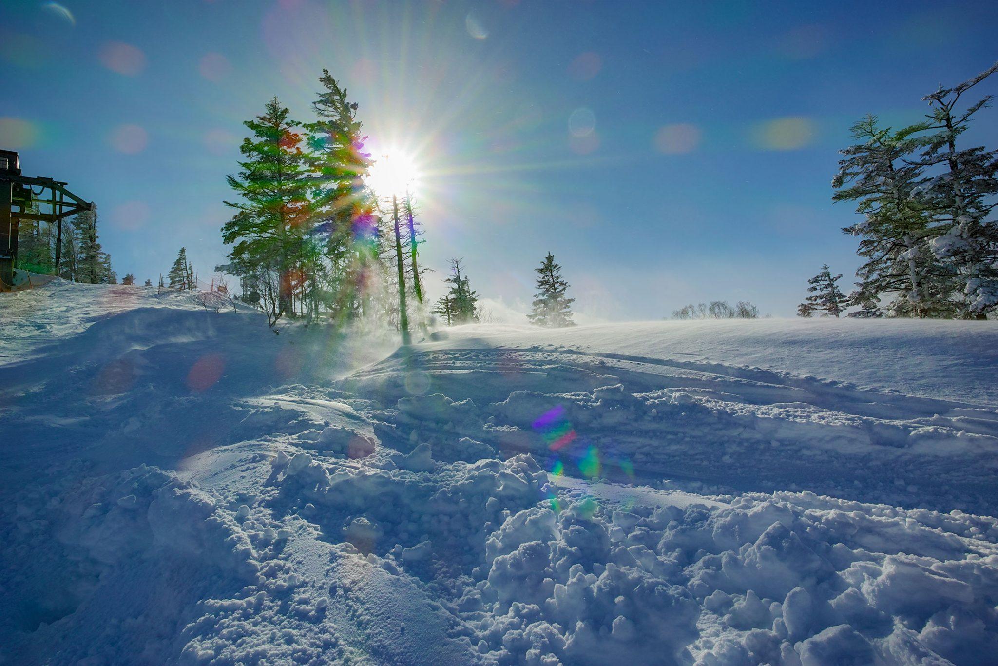 苗場スキー場頂上付近