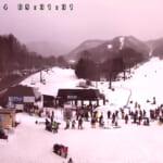 宝台樹スキー場ライブカメラ